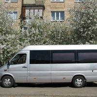 Доставка груза 200 из Украины в Европу. Транспортировка умершего катафалком «Mercedes Sprinter», бронирование за сутки до выезда.